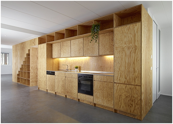 plywood cabinet - Plywood Kitchen Cabinets