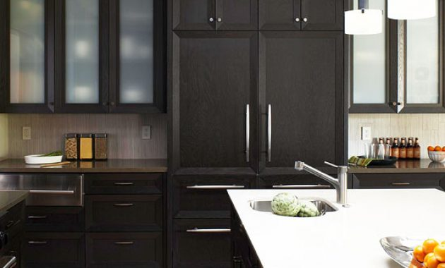Dark Cabinets in the Kitchen Trend and Ideas