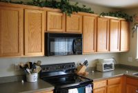 Plants For Above Kitchen Cabinets